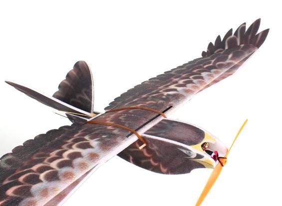 eagle_epp_hobbyking_1