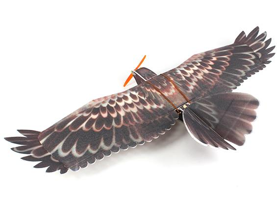 eagle_epp_hobbyking_4