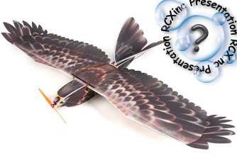 EAGLE EPP Slow Flyer de HobbyKing: Pour voler avec les oiseaux.