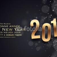 Bonne Année 2015: Quelle vous apporte le bonheur...